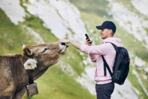 young man photographing swiss cow against mountain GWMUYBF 1